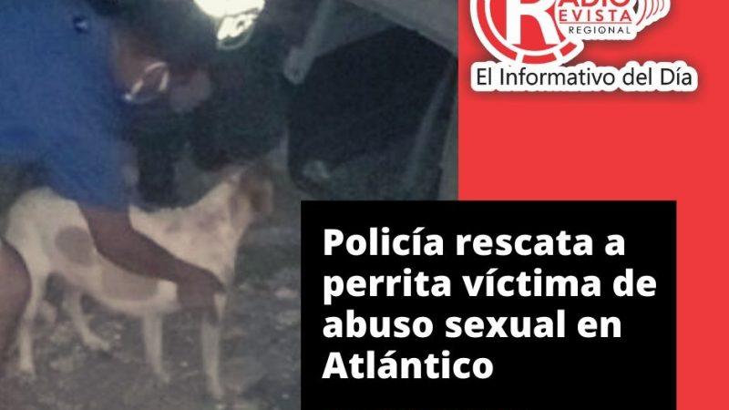 Policía rescata a perrita víctima de abuso sexual en Atlántico