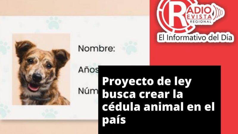 Proyecto de ley busca crear la cédula animal en el país