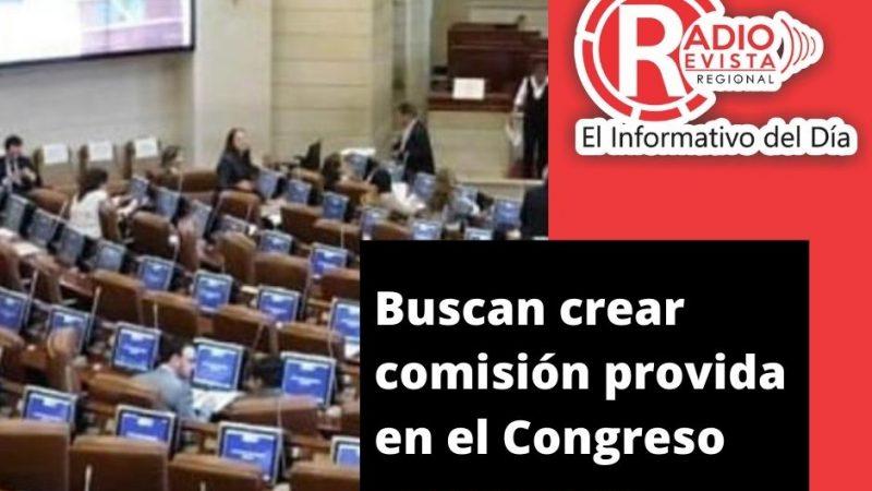 Buscan crear comisión provida en el Congreso