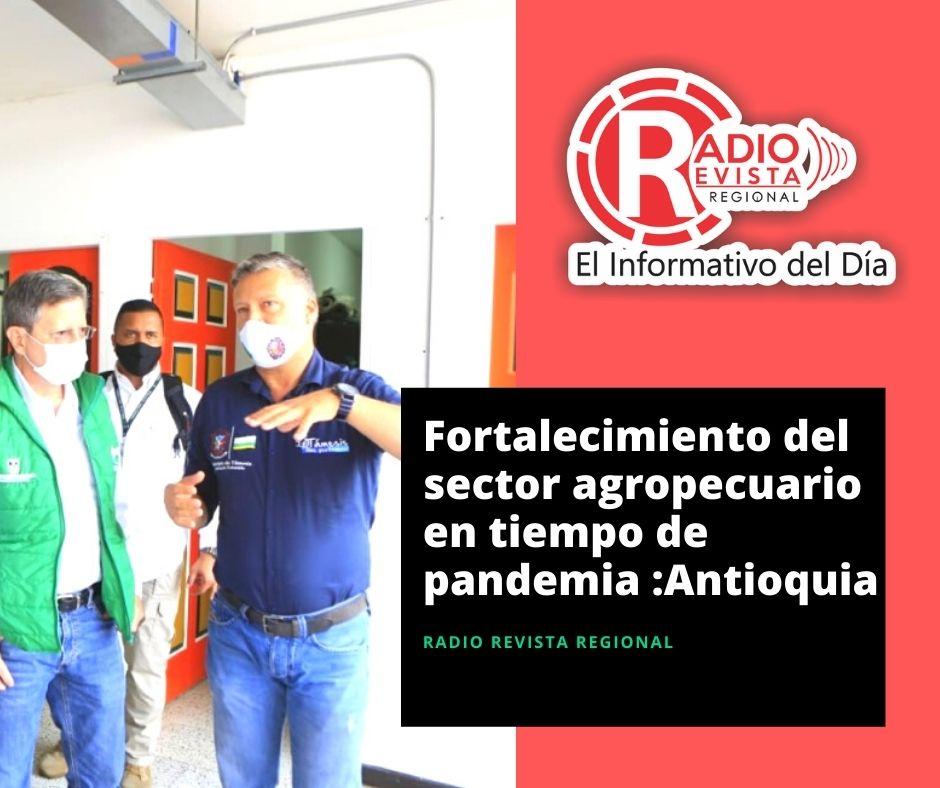 Fortalecimiento del sector agropecuario en tiempo de pandemia Antioquia