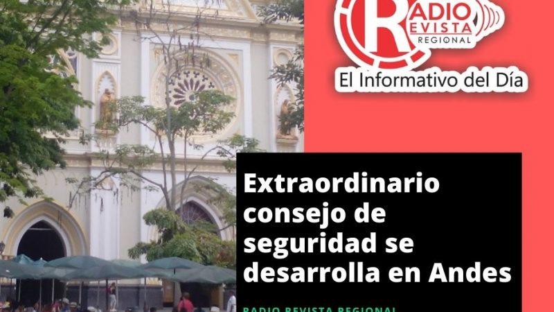 Extraordinario consejo de seguridad en Andes