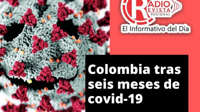 Colombia tras seis meses de covid-19