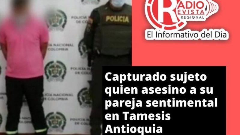 VIDEO :Capturado sujeto quien asesino a su pareja sentimental en Tamesis Antioquia