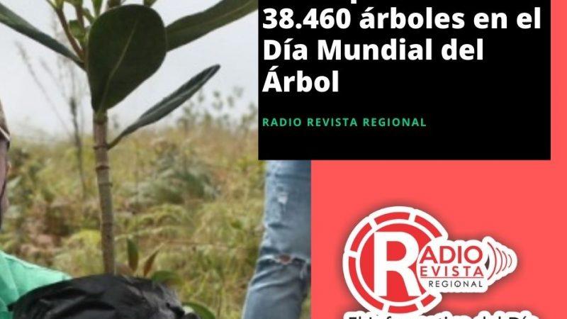 Antioquia sembró 38.460 árboles en el Día Mundial del Árbol
