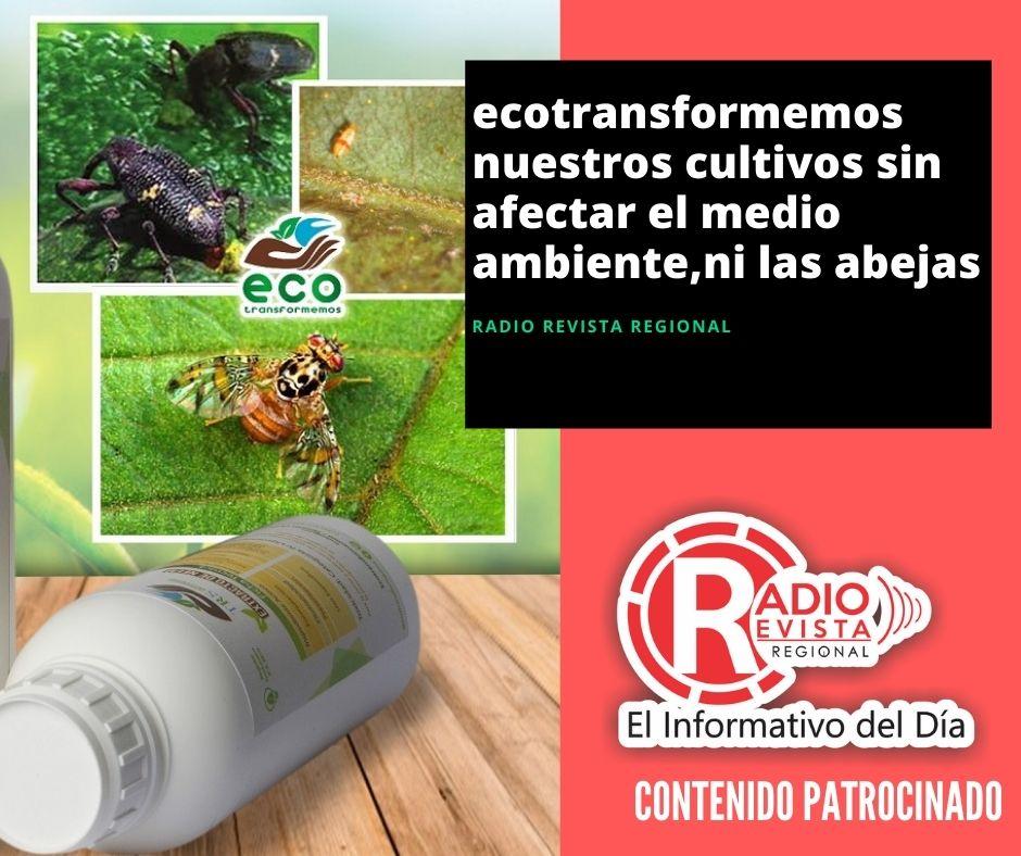 Ecotransformemos nuestros cultivos sin afectar el medio ambiente,ni las abejas