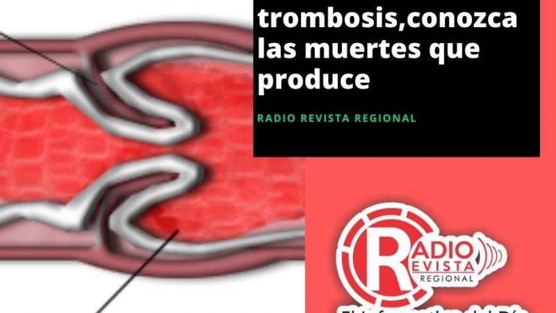 Dia mundial de la trombosis,conozca las muertes que produce