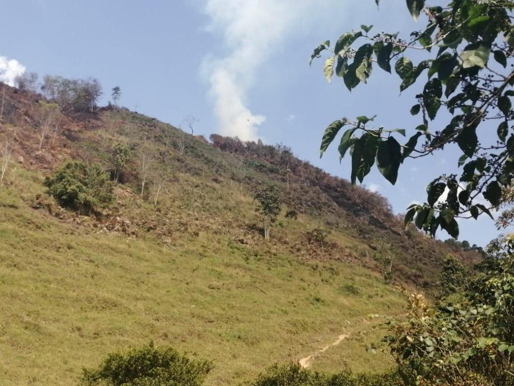 Dos incendios de cobertura vegetal y uno estructural se presentaron en los últimos tres días en Antioquia