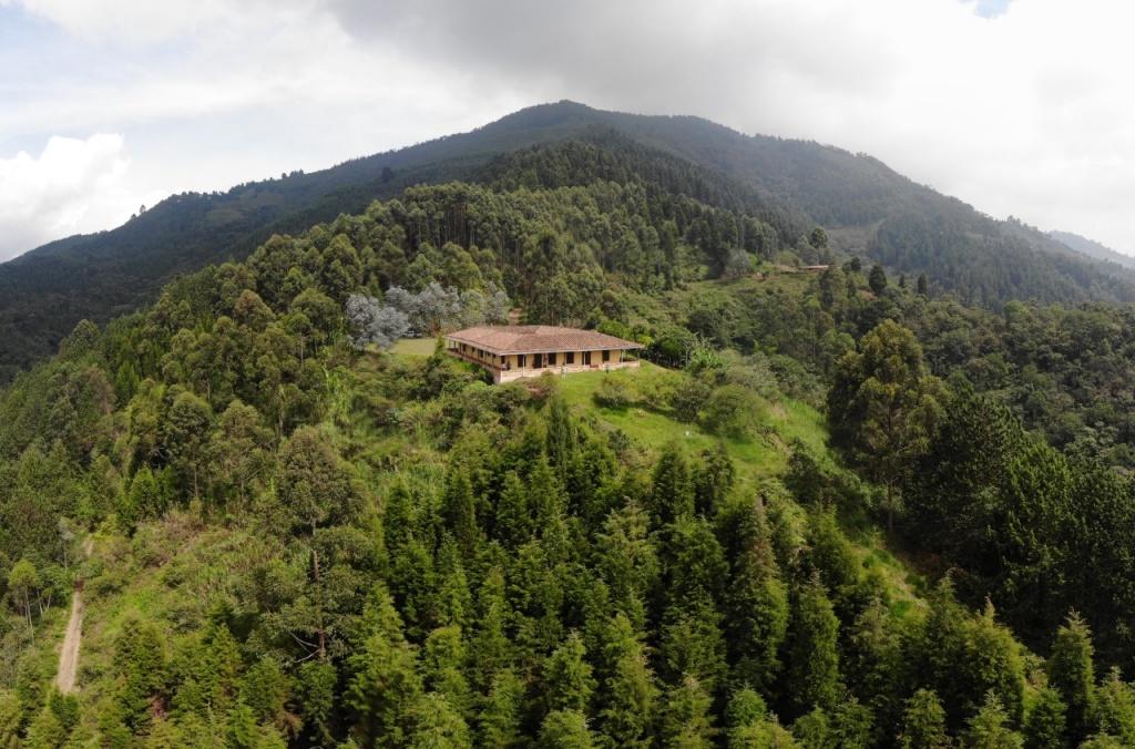 Antioquia le apuesta a la paz con proyectos agrícolas por 100.000 millones de pesos