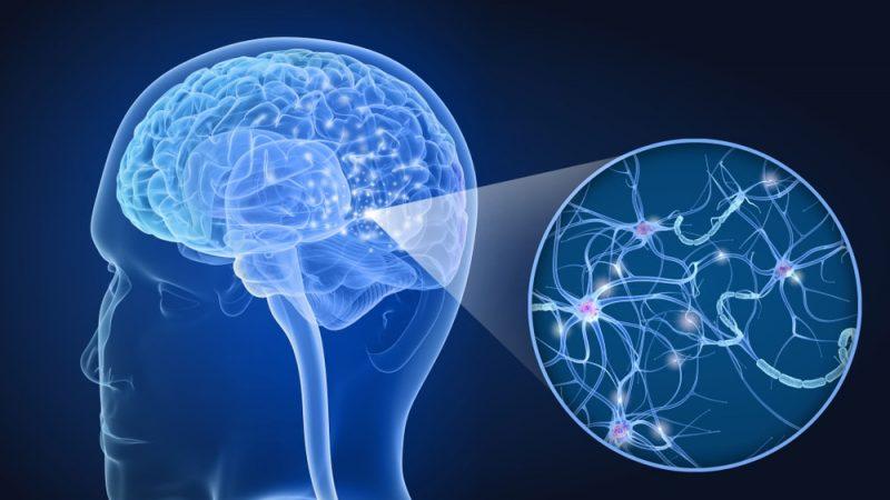 Esclerosis Múltiple (EM), la enfermedad huérfana más frecuente en Antioquia