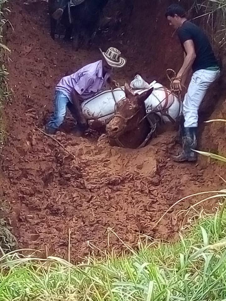 Comunidad de la Vereda San José Preocupada por el deterioro de la vía debido a las fuertes lluvias